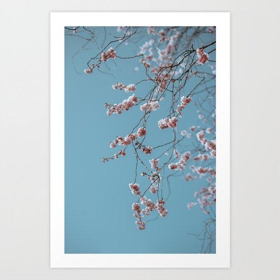 spring colors Art Print