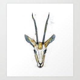 The Antelope Art Print