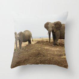 Elephant friends Throw Pillow