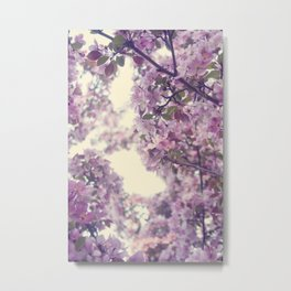 The scent of Spring Metal Print