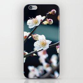 Spring! iPhone Skin