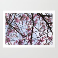 All the Pink Art Print
