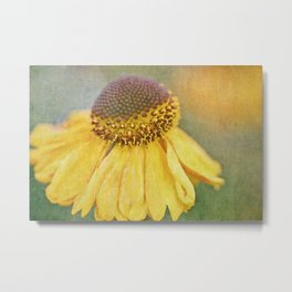 Goldilocks Metal Print