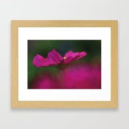 Grace of a Cosmo Framed Art Print