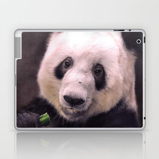 Giant Panda Bear Laptop & iPad Skin