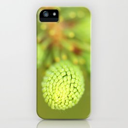 New Growth - Spruce Tree iPhone Case