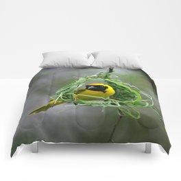 BAYA WEAVER Comforters