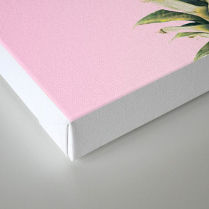 Pineapple Pink Canvas Print
