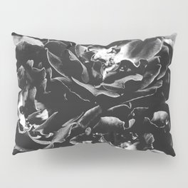 Black and White Rose Bush Pillow Sham