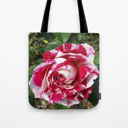 A Red and White Rose Tote Bag
