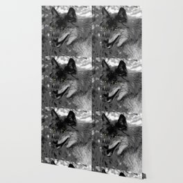 Alpha Male Wolf Wallpaper