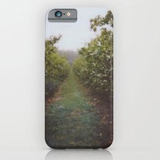Orchard Row iPhone 6s Slim Case