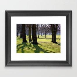 2009 - Park (High Res) Framed Art Print
