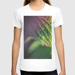 An accent tone T-shirt