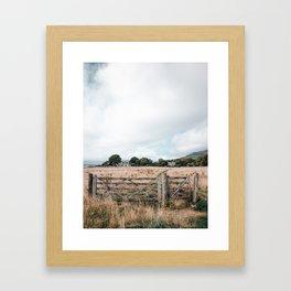 Wheat field in Scotland Framed Art Print