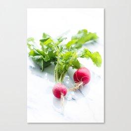 Spring Radishes Canvas Print