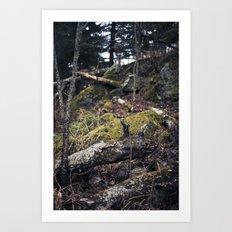 overgrown. Art Print