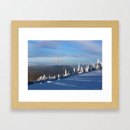 Snow pines Framed Art Print