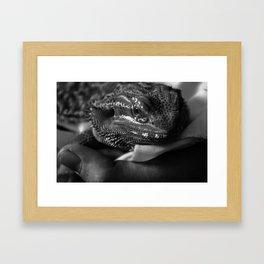 T Framed Art Print