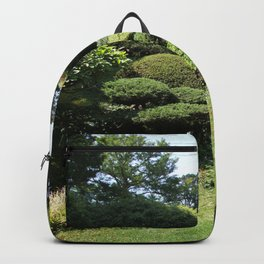 Japanese Garden View With Lantern Backpack