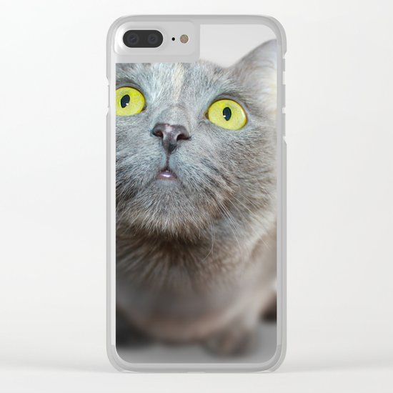 The Cat's Stare Clear iPhone Case