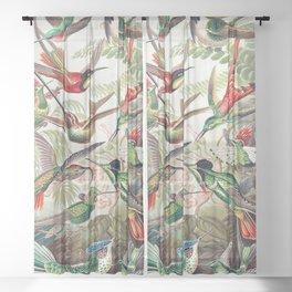 Vintage Audubon Poster Sheer Curtain