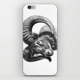 The mouflon G125 iPhone Skin