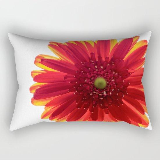 Red Macro Photo Daisy Rectangular Pillow