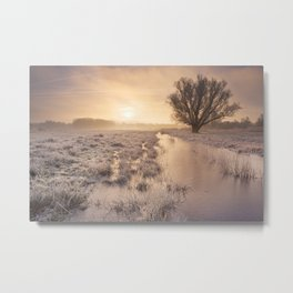 Sunrise over a frozen landscape in The Netherlands Metal Print
