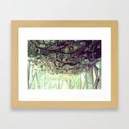 Tangled Framed Art Print