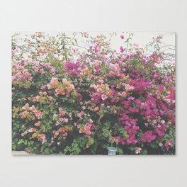 pink floral I Canvas Print
