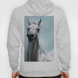 Arabian White Horse Painting Hoody