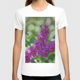 Lilac scent in the spring T-shirt