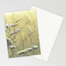Lighter shade of Pale Stationery Cards