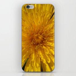 Smiling Dandelion iPhone Skin
