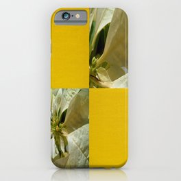 Pale Yellow Poinsettia 1 Blank Q7F0 iPhone Case
