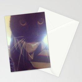 School Kitty Stationery Cards