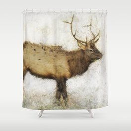 Grand Canyon Elk No. 1 Wintered Shower Curtain
