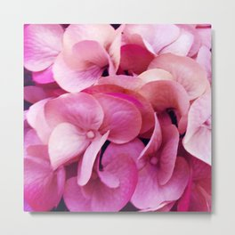 Pink Angel Wings Divine Flowers Exquisite, Elegant Photo Metal Print
