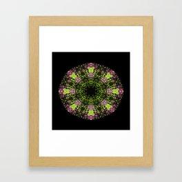 Lilacs delight... Framed Art Print