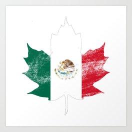Mexico/Canada Art Print