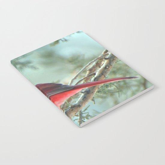 Dreamy Morning (Northern Cardinal) Notebook