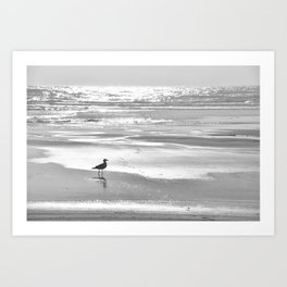 BIRDIE WALKING ON THE BEACH AT SUNSET - BLACK AND WHITE Art Print