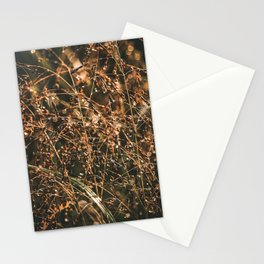 Morning dew on plant Stationery Cards