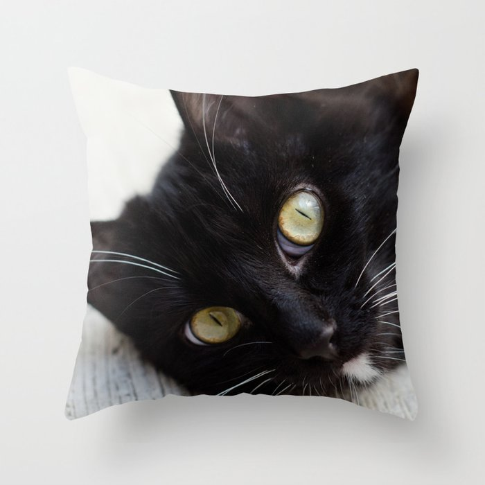 Sensei Throw Pillow