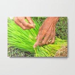 Hands, Don Det, Laos Metal Print
