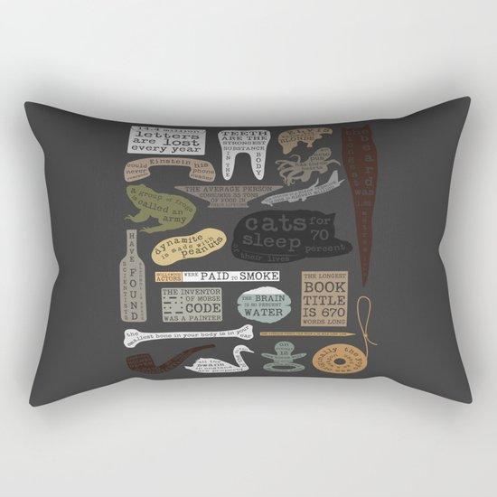 22 Facts - Useful Facts Rectangular Pillow
