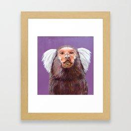 Marmoset Monkey Framed Art Print