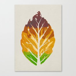 Leaf Cycle Canvas Print