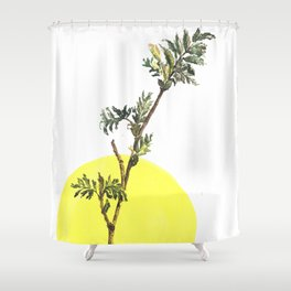 branch spring sun nature watercolor Shower Curtain